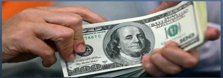 Куда вложить доллары