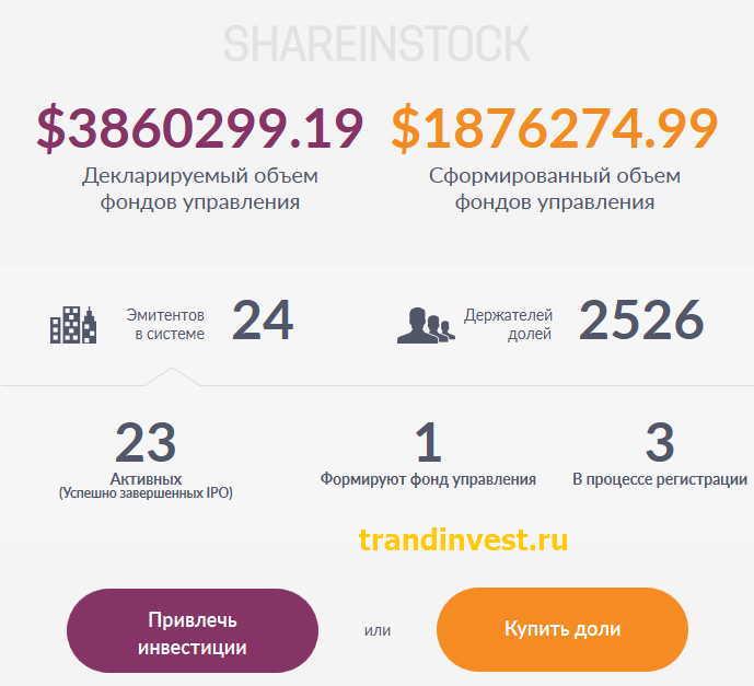 Shareinstock капитал