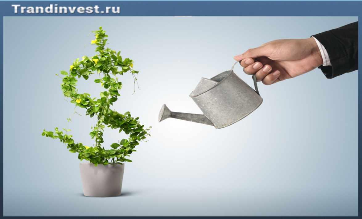 Как деньги приумножить за короткий срок правильно? (Часть 2)
