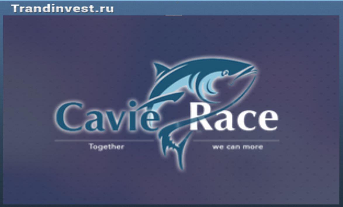 Cavia race отзывы