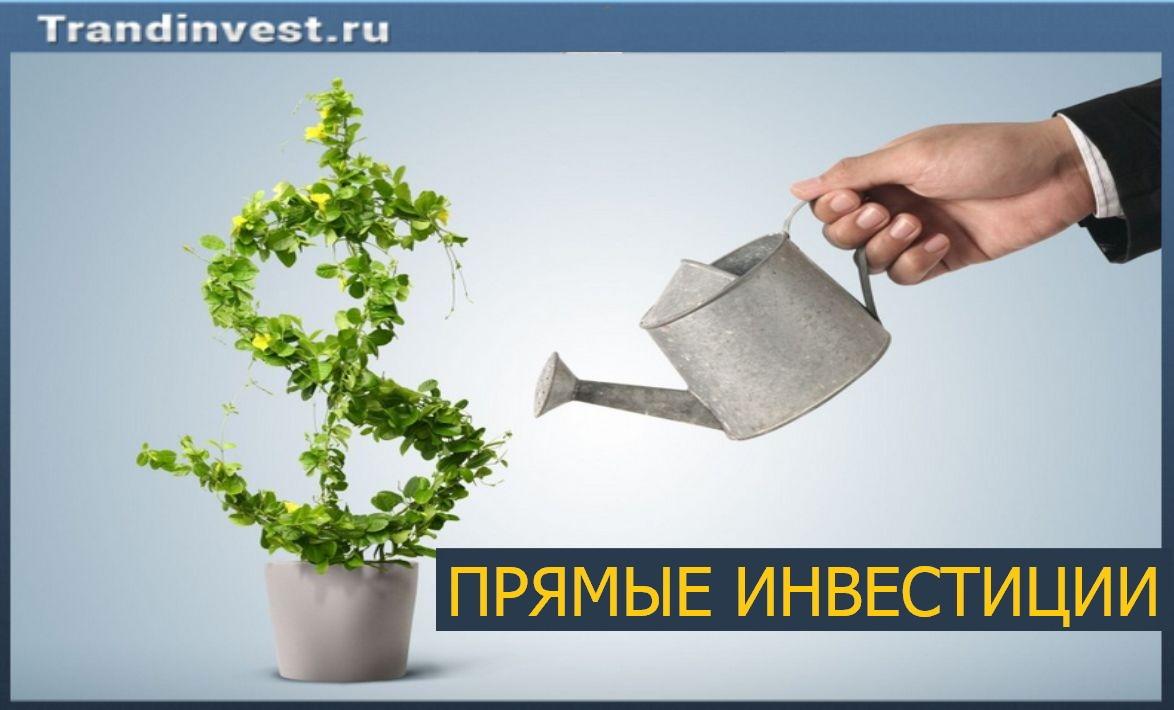 Прямые инвестиции