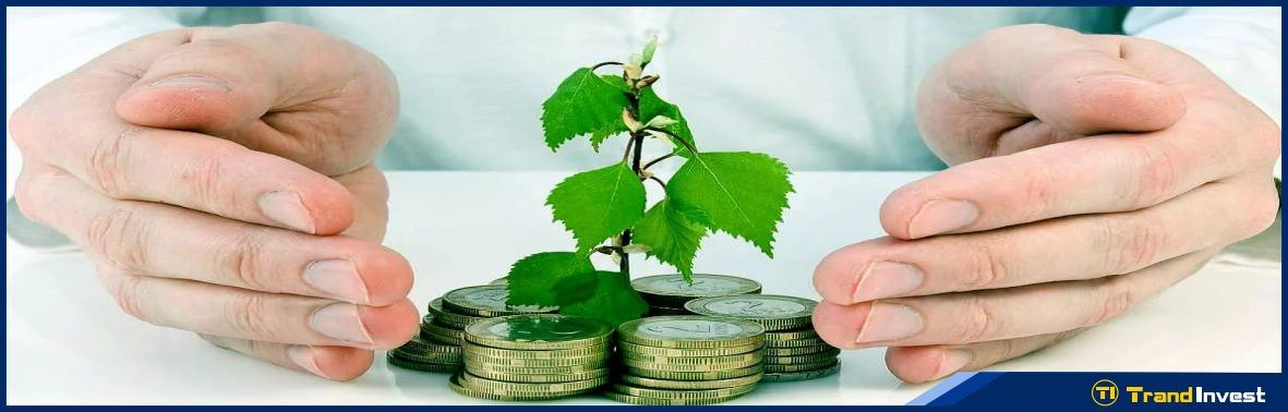 Риски инвестиций в бизнес