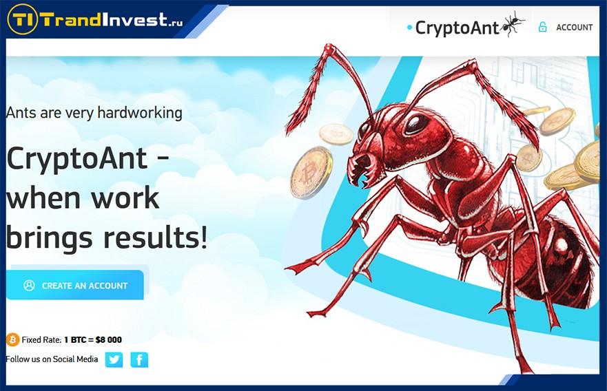 Crypto Ant отзывы, обзор и рекомендации по инвестированию в высокодоходные проекты
