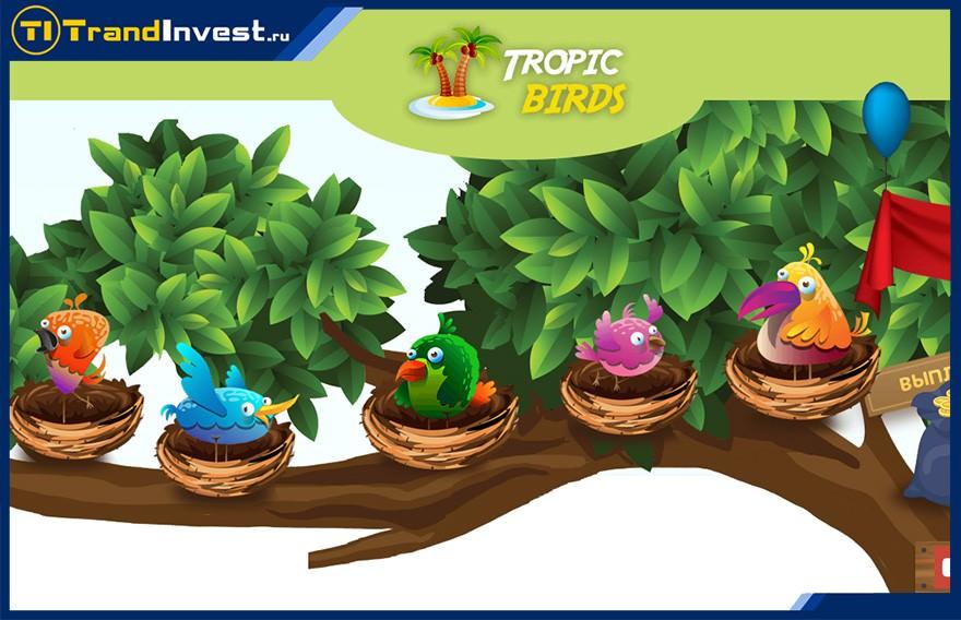Tropic Birds отзывы, обзор, как зарабатывать на инвестиционных играх?