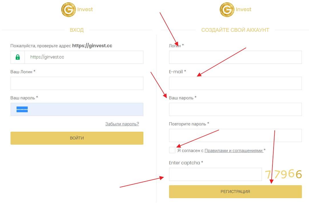 Ginvest регистрация
