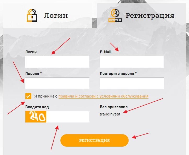 Tender expert регистрация