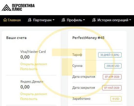 Perspectplus депозит